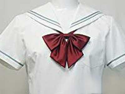 名古屋女子大学中学校 制服参考画像